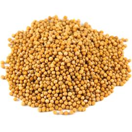 Горчица (семена белые) - 100 грамм