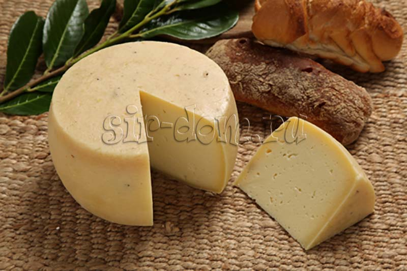 сыр качотта рецепт приготовления в домашних условиях