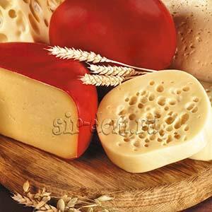 рецепт сыра гауда с фотографиями